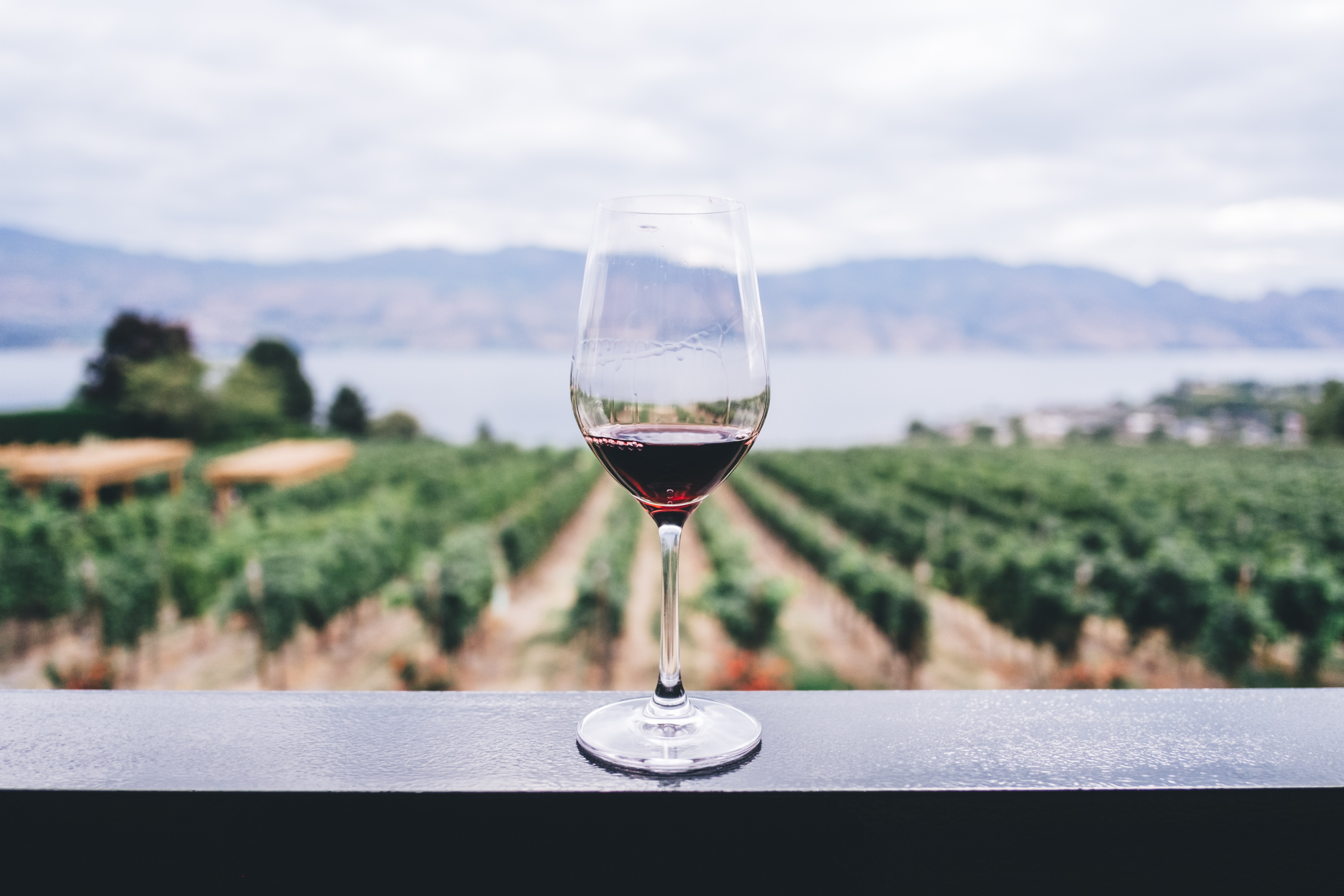 Brand Story: le concept de Mon Vin chez Vous